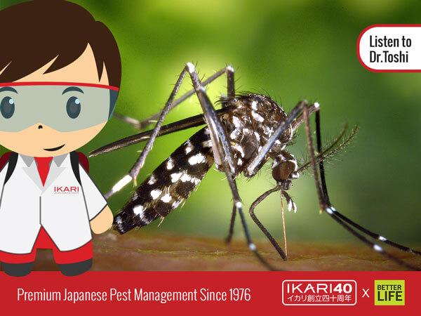 facebook-ikari-image2
