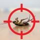 pest controls